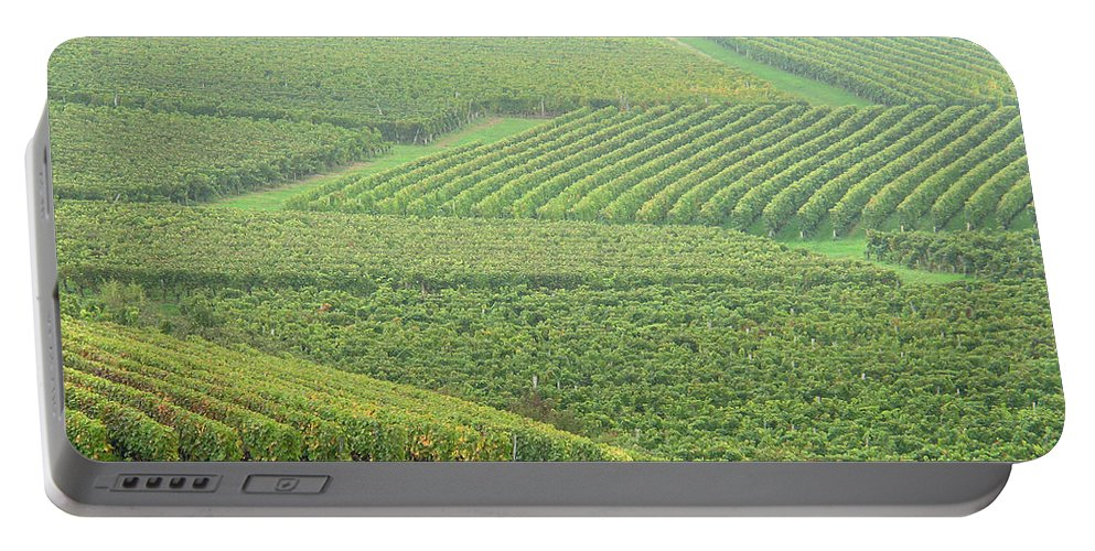 Vineyards Portable Battery Charger featuring the photograph Vineyards Near St Emilion In The Mist by Greg Matchick