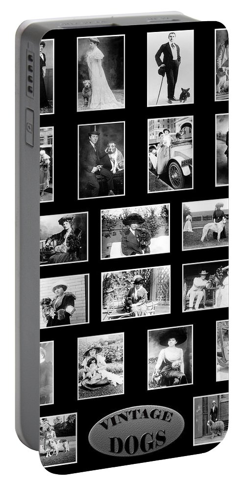 Dogs Portable Battery Charger featuring the photograph Vintage Dogs by Andrew Fare
