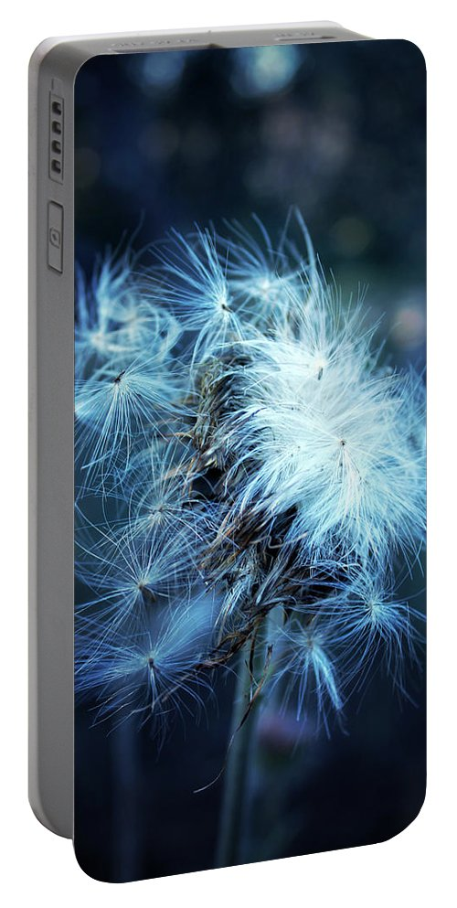 Purple Thistle Portable Battery Charger featuring the photograph Voice Of A Thistle by Trish Mistric