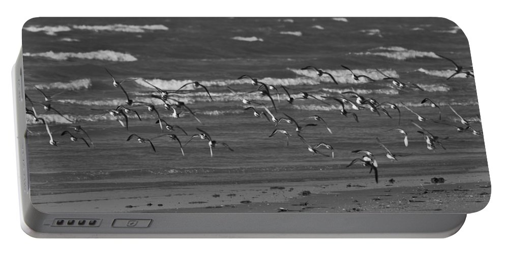 Wading Birds Portable Battery Charger featuring the photograph Wading Birds In Flight V4 by Douglas Barnard
