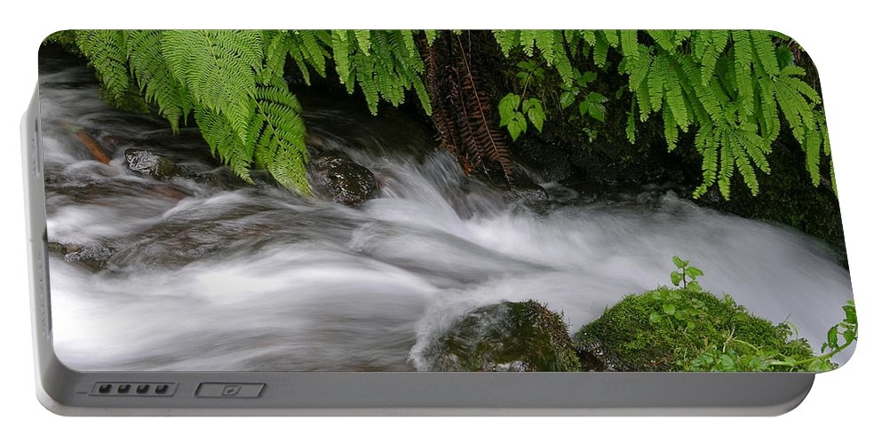 Wahkeena Falls Portable Battery Charger featuring the photograph Wahkeena Falls One by Mike Penney