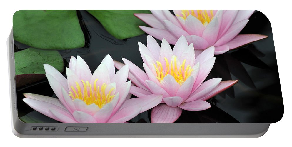 Water Lilies Portable Battery Charger featuring the photograph water lily 88 Sunny Pink Water Lily with Reflection by Terri Winkler