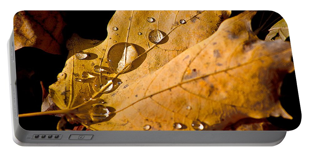 Fallen Leaf With Water Portable Battery Charger featuring the photograph Waterfall by Burney Lieberman