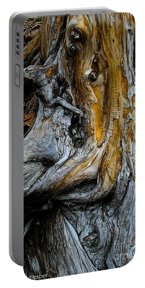 Nature Portable Battery Charger featuring the photograph Weathered Wood by Susan Herber