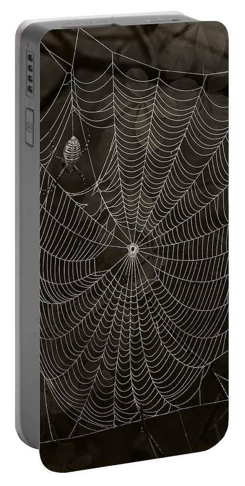 Arachnid Portable Battery Charger featuring the photograph Web Master by Ron Jones