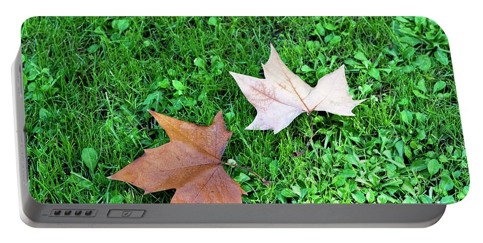 Wet Leaves Portable Battery Charger featuring the photograph Wet Leaves On Grass by Lorraine Devon Wilke