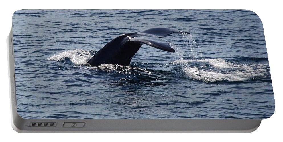 Whale Portable Battery Charger featuring the photograph Whale Dive by Richard Bryce and Family