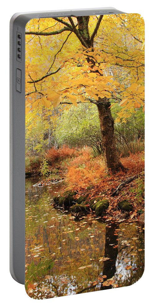 White Ash Portable Battery Charger featuring the photograph White Ash And Stream In Autumn by Roupen Baker