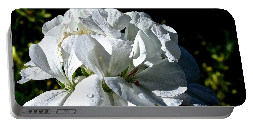 Plant Portable Battery Charger featuring the photograph White Dew by Susan Herber