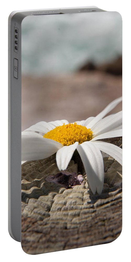 White Portable Battery Charger featuring the photograph White Flower by Rebecca Akporiaye