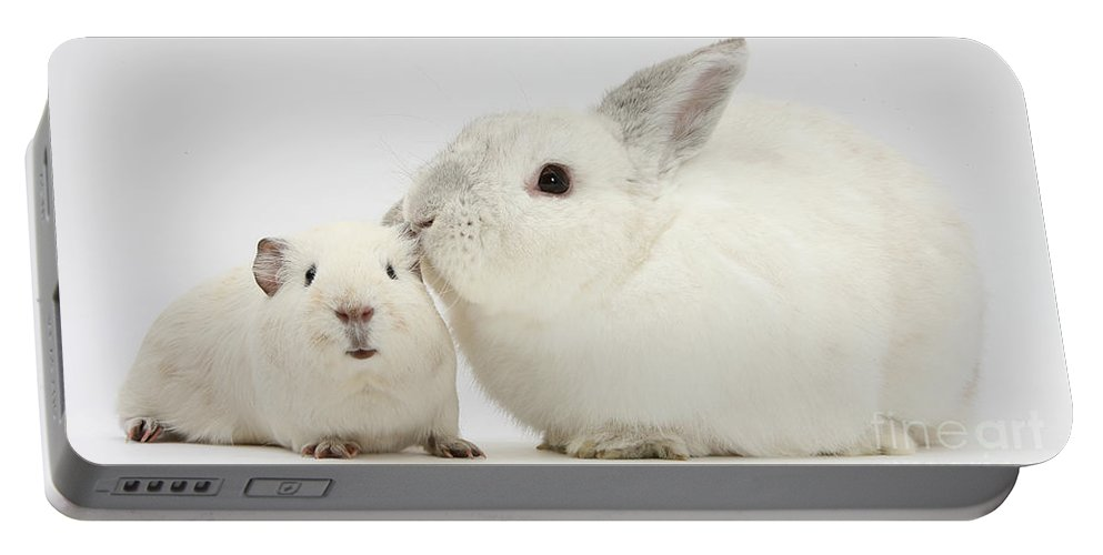 Nature Portable Battery Charger featuring the photograph White Rabbit And White Guinea Pig by Mark Taylor