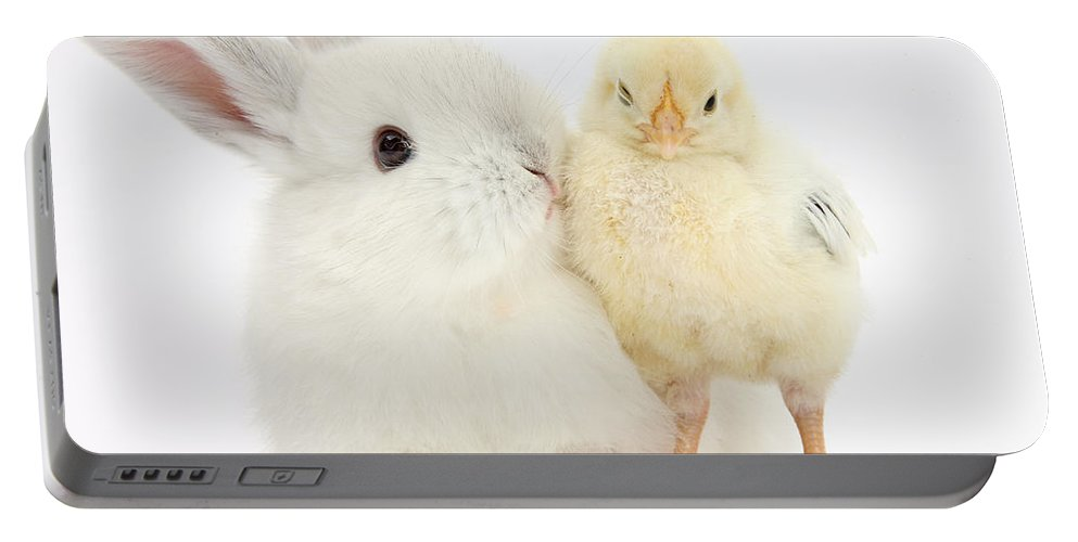 Nature Portable Battery Charger featuring the photograph White Rabbit And Yellow Bantam Chick by Mark Taylor