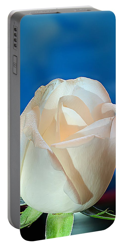 White Rose Portable Battery Charger featuring the photograph White Rose by Randall Branham