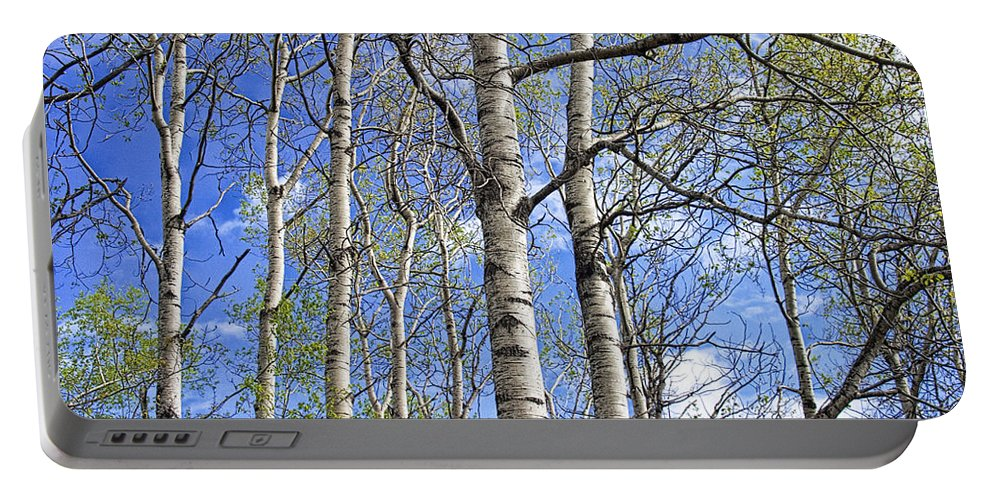 Art Portable Battery Charger featuring the photograph White Trees Against A Blue Sky by Randall Nyhof
