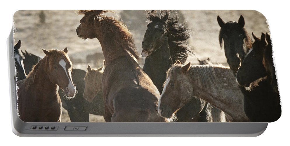 Wild Horse Battle Portable Battery Charger featuring the photograph Wild Horse Battle by Wes and Dotty Weber