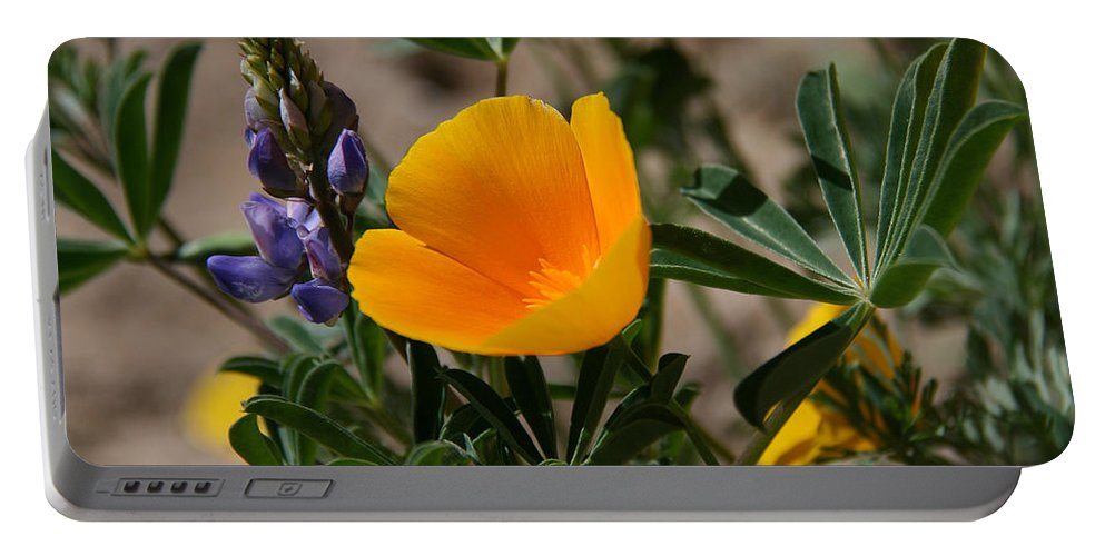 Poppy Portable Battery Charger featuring the photograph Wild Poppy And Lupine by Elizabeth Rose