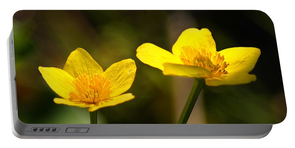 Bill Pevlor Portable Battery Charger featuring the photograph Wild Yellows by Bill Pevlor
