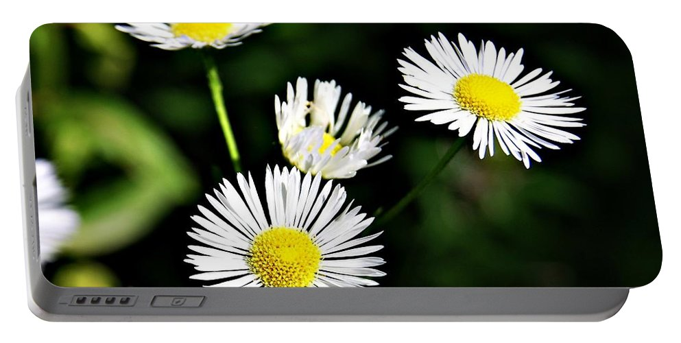 Wildflower Portable Battery Charger featuring the photograph Wildflower 4 by Joe Faherty