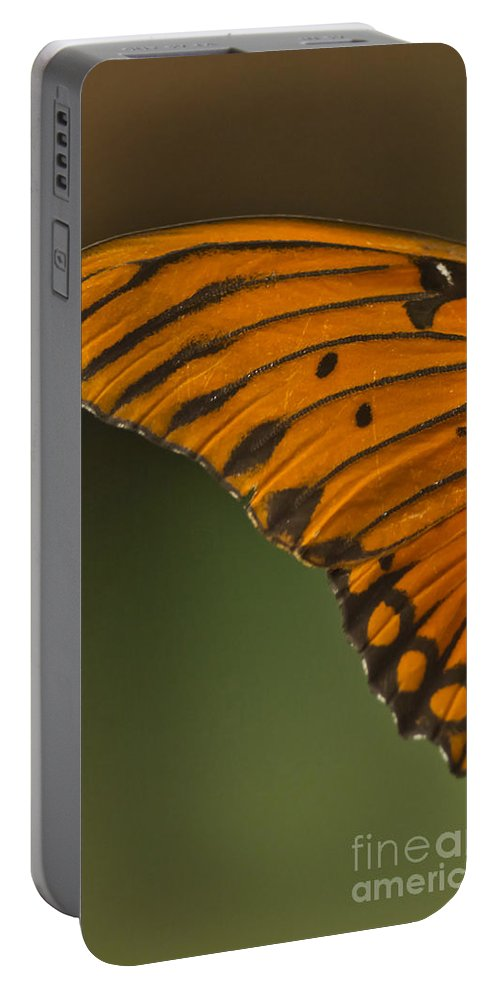 Butterfly Portable Battery Charger featuring the mixed media Winging It by Kim Henderson