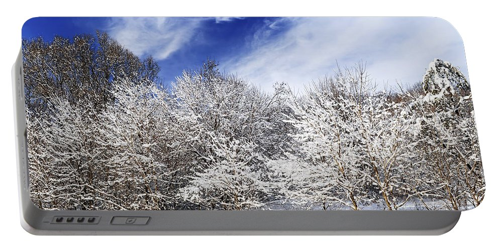 Winter Portable Battery Charger featuring the photograph Winter Forest Covered With Snow by Elena Elisseeva