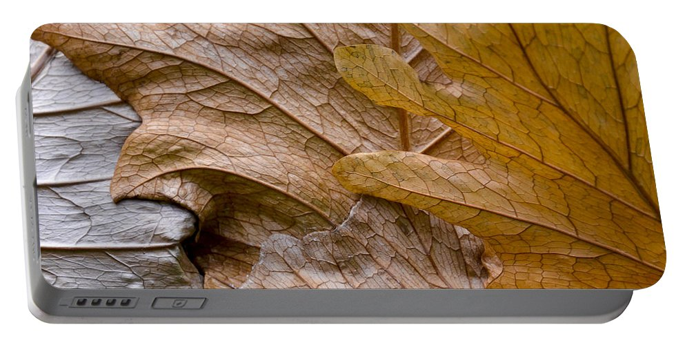 Botanical Portable Battery Charger featuring the photograph Autumn Leaves Of Gold by Carolyn Marshall