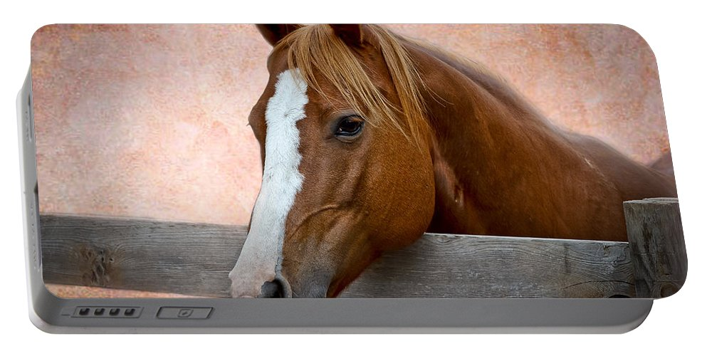 Afternoon Portable Battery Charger featuring the photograph With A Whisper by Doug Long