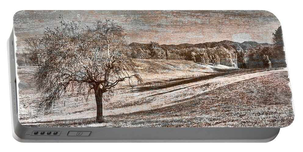 Appalachia Portable Battery Charger featuring the photograph Wizened Tree by Debra and Dave Vanderlaan