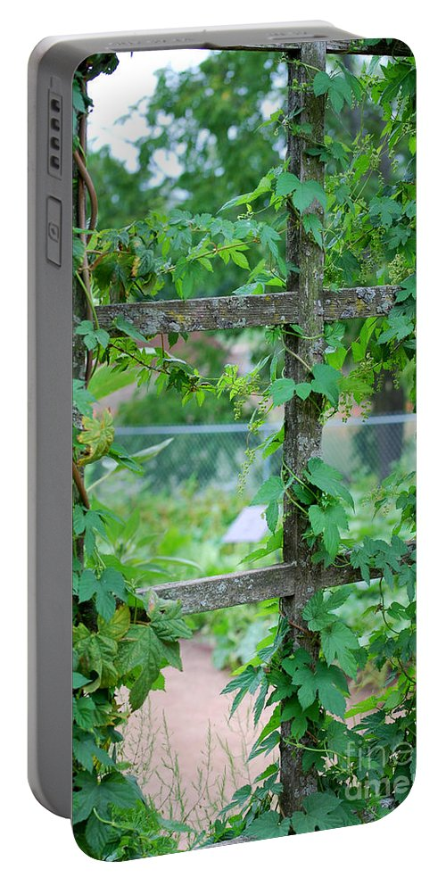 Trellis Portable Battery Charger featuring the photograph Wooden Trellis And Vines by Nancy Mueller