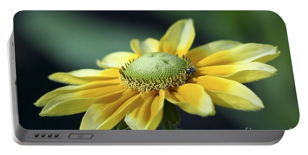 Flower Portable Battery Charger featuring the photograph Yellow Daisy by Teresa Zieba