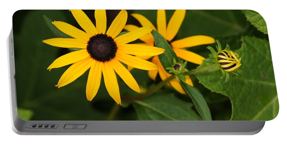 Flowers Portable Battery Charger featuring the photograph Yellow Flowers by Megan Cohen