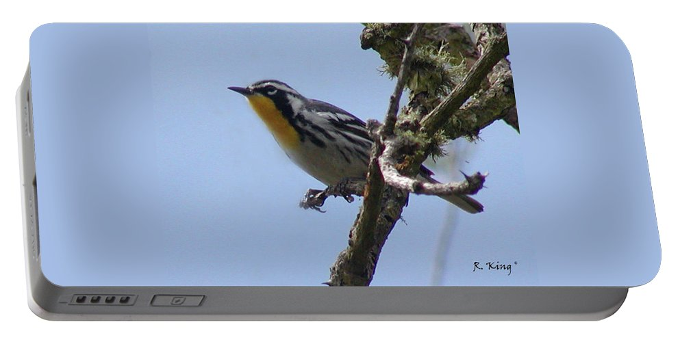 Roena King Portable Battery Charger featuring the photograph Yellow-throated Warbler by Roena King