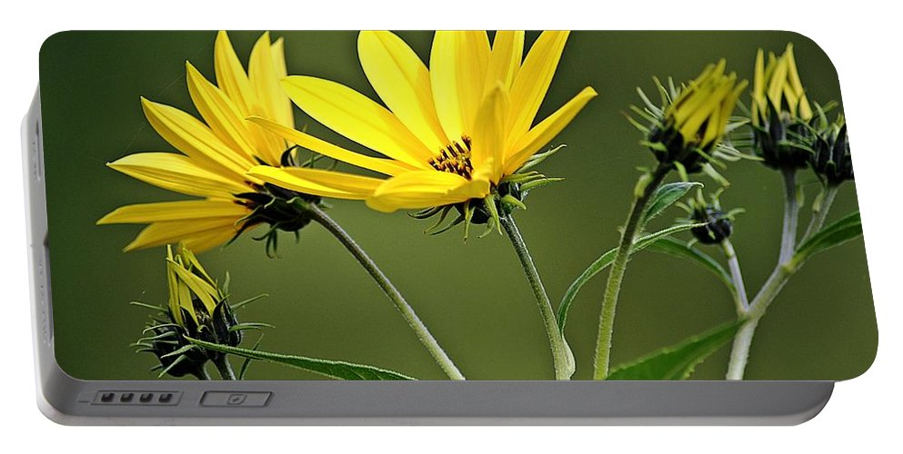 Yellow Portable Battery Charger featuring the photograph Yellow Wildflower 2 by Joe Faherty