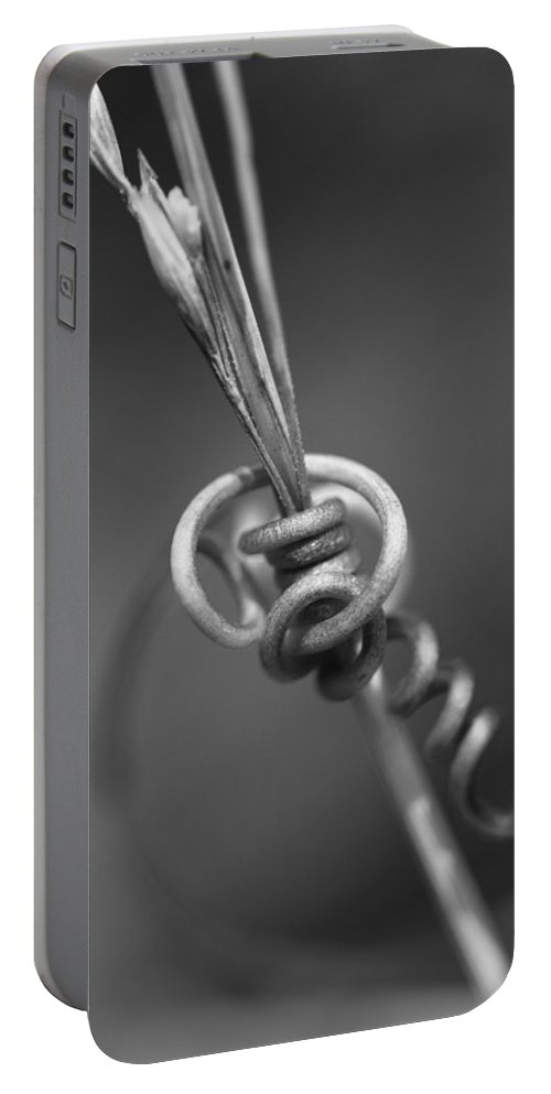 Knot Portable Battery Charger featuring the photograph You Got Me Tied In Knots by Kathy Clark