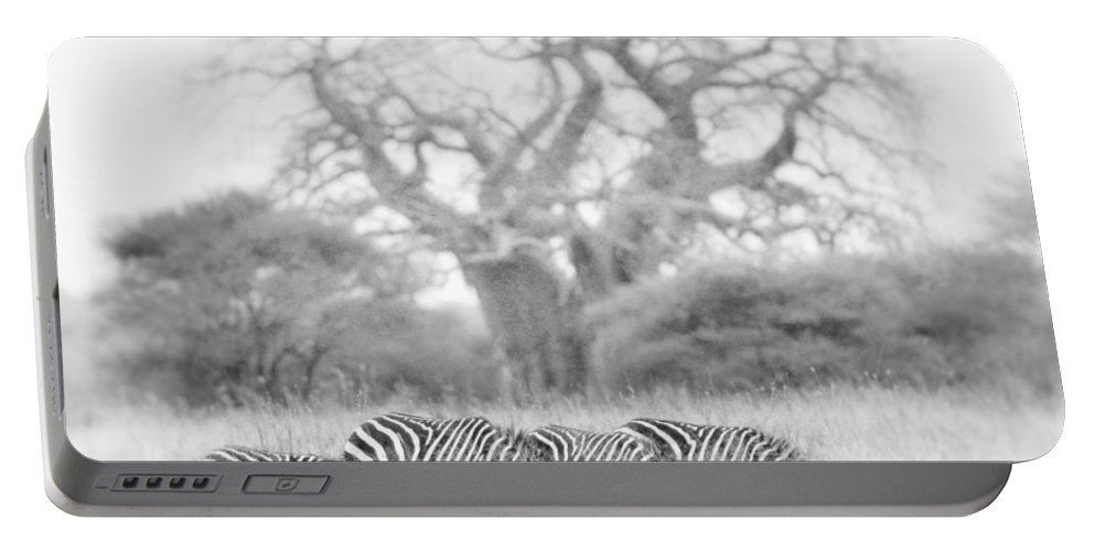 Africa Portable Battery Charger featuring the photograph Zebra And Tree by Jack Daulton