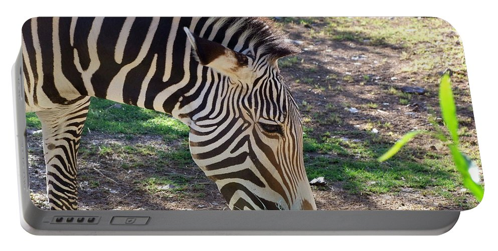 Mary Deal Portable Battery Charger featuring the photograph Zebra At Lunch by Mary Deal