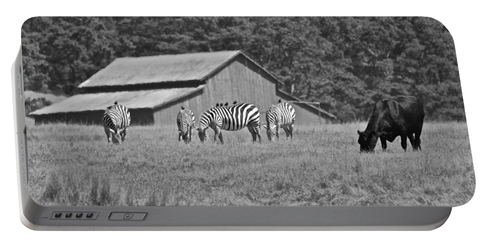 San Simeon Portable Battery Charger featuring the photograph Zebras In San Simeon by Eric Tressler