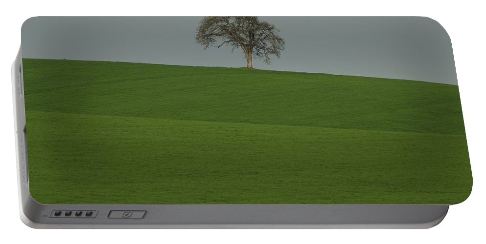 Tree Field Portable Battery Charger featuring the photograph A Lone by Sara Stevenson