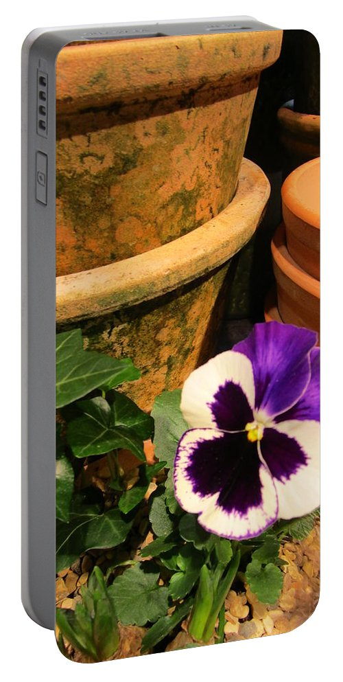 Pansie Portable Battery Charger featuring the photograph A Thought by Rosita Larsson