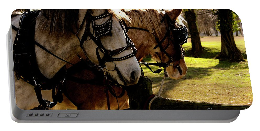 Horses Portable Battery Charger featuring the photograph Carriage Ride by Kim Henderson
