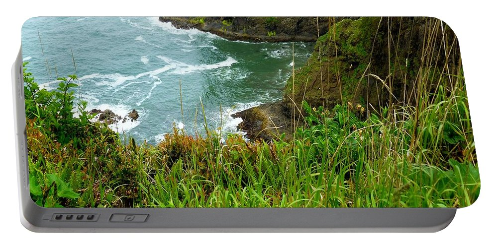 Sea Stacks Portable Battery Charger featuring the photograph Oregon's Seaside Cliffs In Springtime by Elaine Bawden