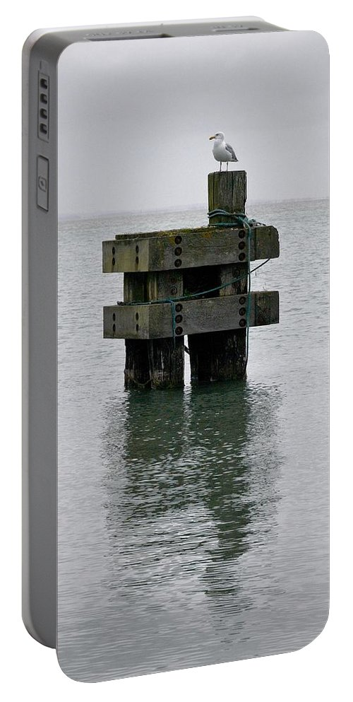 Lehtokukka Portable Battery Charger featuring the photograph Seagull's Rest by Jouko Lehto