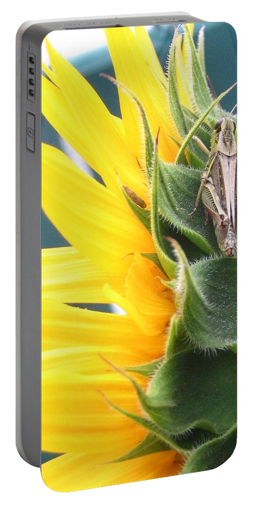 Sunflower Portable Battery Charger featuring the photograph ... Small Break by Line Gagne