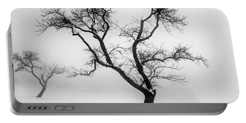 Empty Portable Battery Charger featuring the photograph Tree In The Snow by Ilan Amihai