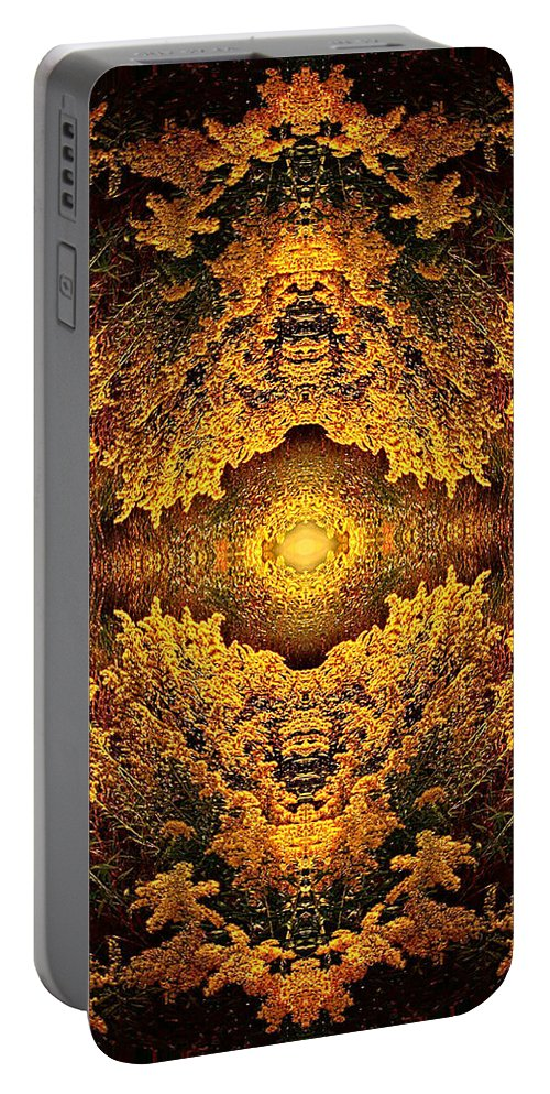 Fine Art Portable Battery Charger featuring the photograph 011 by Phil Koch