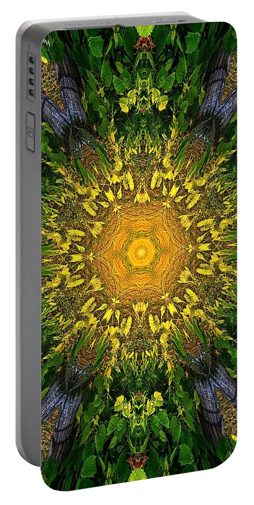 Fine Art Portable Battery Charger featuring the photograph 012 by Phil Koch