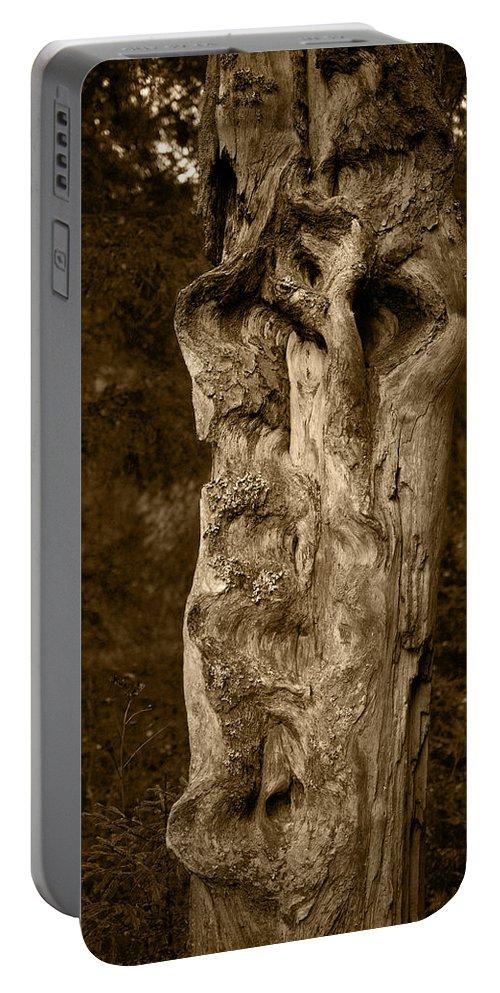 Lehtokukka Portable Battery Charger featuring the photograph Wooden Face by Jouko Lehto