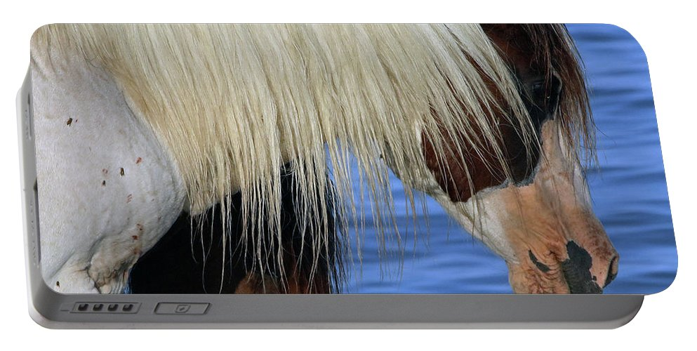 Horses Portable Battery Charger featuring the photograph 580a by Timm Andrews
