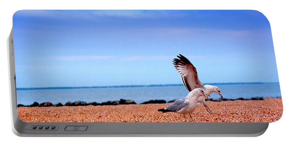 Clay Portable Battery Charger featuring the photograph A Day At The Beach by Clayton Bruster