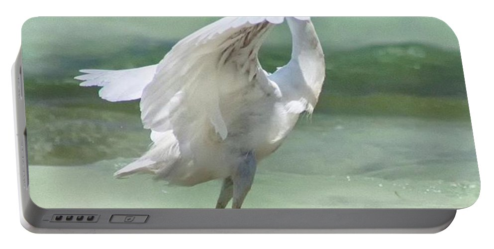Egret Portable Battery Charger featuring the photograph A Snowy Egret (egretta Thula) At Mahoe by John Edwards