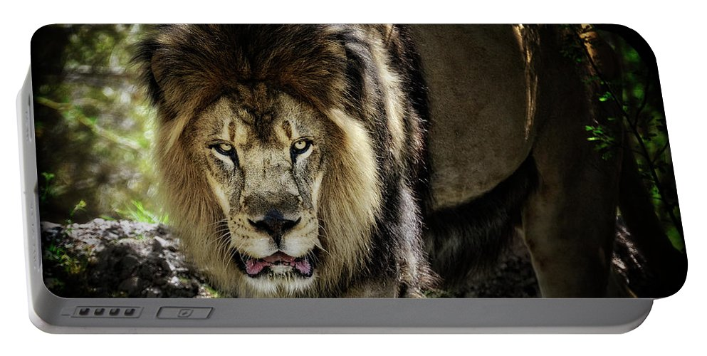 African Lion Portable Battery Charger featuring the photograph African Lion by Saija Lehtonen